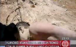 Huancayo: atan a delincuente a un tronco con un alambre de púas y lo castigan
