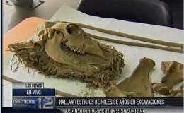 Los Olivos: Encuentran restos arqueológicos en el cerro Pacífico