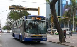 Corredor Azul: MML incorporará nuevos servicios 301 Expreso y Expreso Centro