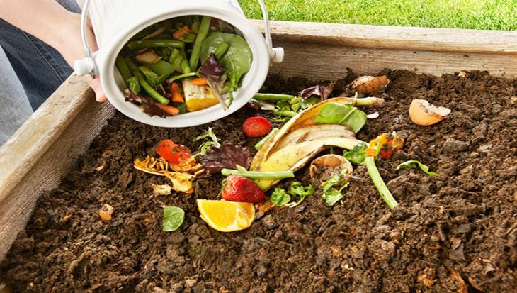 Lima compost aprende c mo hacer abono org nico en casa - Hacer abono organico ...