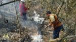 Incendios en Lambayeque: piden a la población no realizar roza y quema - Noticias de vida silvestre