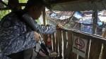 Filipinas: ataque contra cárcel facilita la fuga de más de 150 presos - Noticias de xavier amatriain