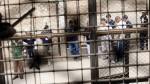 Unos 14 mil presos en el Perú sufren alguna enfermedad - Noticias de inpe