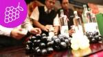 Semana del Chilcano: conoce los 4 tipos de pisco - Noticias de chilcano