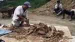 Formalización minera: ministros informarán sobre el proceso - Noticias de piura