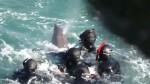 Facebook: cazadores alejan a delfín de su cría en desgarrador video viral - Noticias de caza de delfines