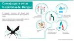 Infografía: Consejos para prevenir el dengue en tu casa - Noticias de casa ronald mcdonald