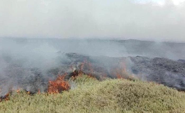 Huaura: incendio forestal afecta zona ecológica en Végueta - América Televisión