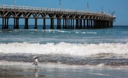 Cerro Azul: playa concurrida pero peligrosa por fierros oxidados en la arena