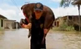 Piura: mascotas fueron rescatadas por miembros de las FF.AA tras inundaciones