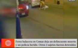 Comas: policía abatió a delincuente tras intensa balacera