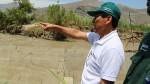 Delincuentes robaron componentes de mallas contra huaicos en Chosica - Noticias de municipalidad de chosica