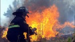 México: bombero muere al intentar sofocar voraz incendio en una refinería - Noticias de crudo