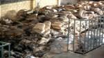 La Libertad: Defensoría encontró deficiencias en el programa Vaso de Leche - Noticias de mora mora