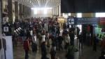 Chiclayo: ave impactó contra avión durante aterrizaje en aeropuerto - Noticias de chiclayo