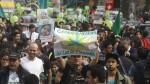 Marihuana medicinal: colectivos marcharon por su legalización - Noticias de