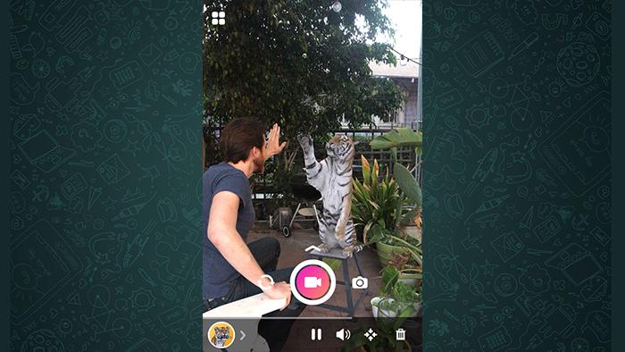 hologramas en whatsapp